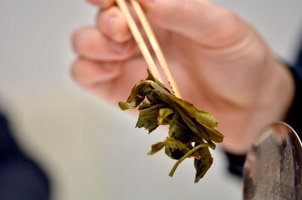 Green Dancong - a tealevelek a sokadik felöntés után (Fotó: MsTea)