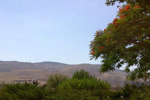 Izraeli látkép (Fotó: Anna)